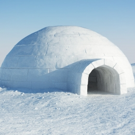 reallytired's igloo